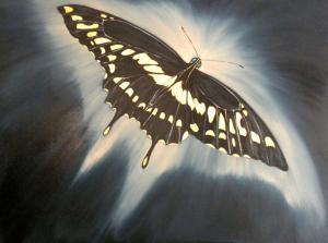 Swallowtail Butterfly by Nazim Artist
