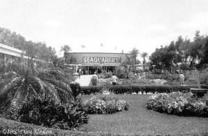 91573059.fD7fWWKh.1960_Miami_n_425H